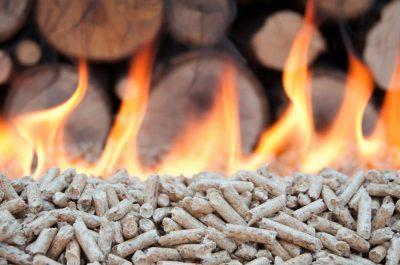 biomass advice uk