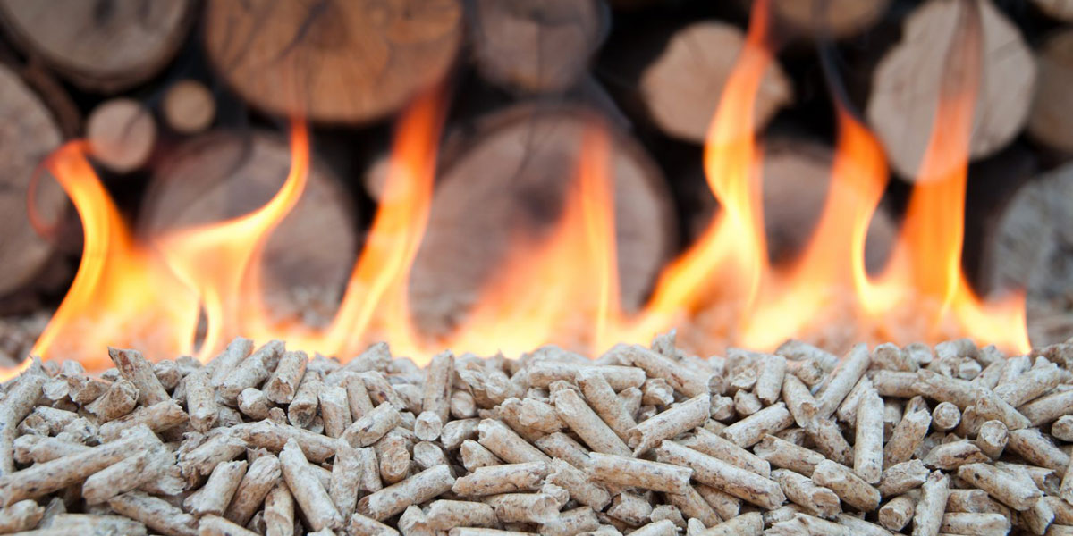 biomass advice uk